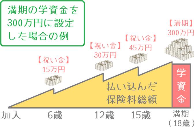 「はじめのかんぽ 小・中・高+大学入学時」の受け取りイメージ
