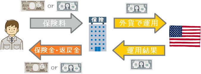 外貨建て保険の仕組み
